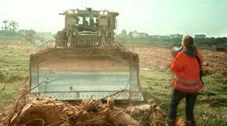 Rachel Corrie di hadapan buldozer   Arab News